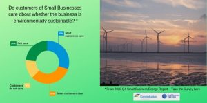 What percentage of small businesses believe their customers care if they are a sustainable business